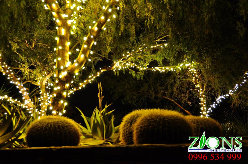 Sân vườn biệt thự nơi nghỉ dưỡng cho gia đình bạn