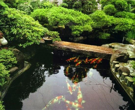 Hồ cá thác nước phong thủy