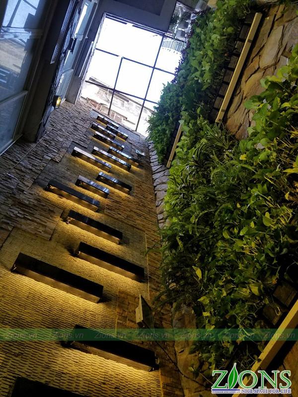 Thi công ường cây tại bệnh viện Medlatec